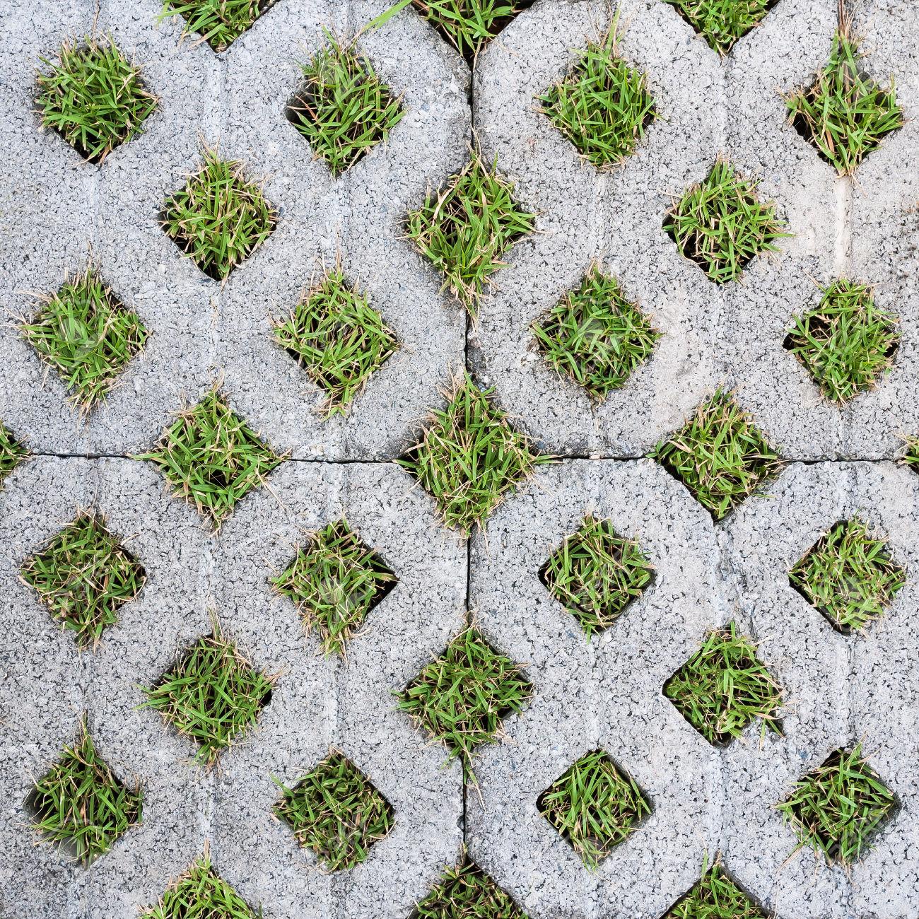 forest pack pro evergreen parking plugins 3dsmax v ray tutorial forum. Black Bedroom Furniture Sets. Home Design Ideas