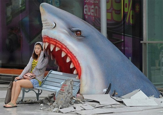 shark-attack-park-bench-1.jpg